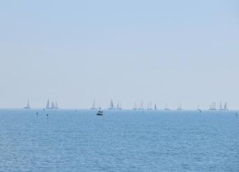 Segel vid horizonten - regatta?